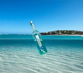 Arniston Bay Wine